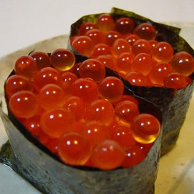 salmon_egg.jpg